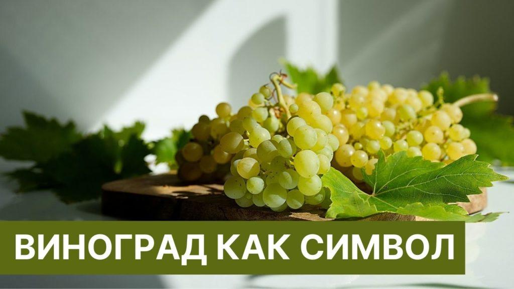 виноград символ